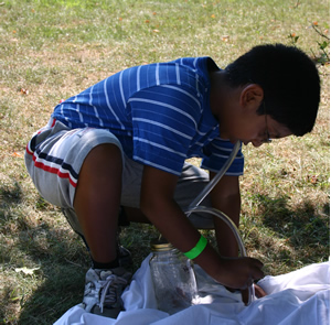 A boy using an insect aspirator at WILD Jersey's bug camp.